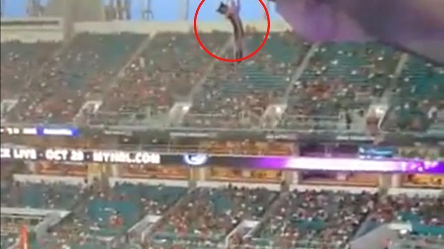 Salvan a un gato tras caer al vacío en un estadio de fútbol