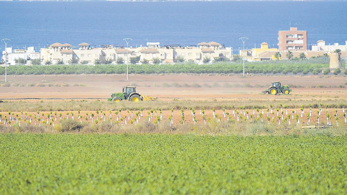 Dos tractores en una explotación agrícola junto al Mar Menor.