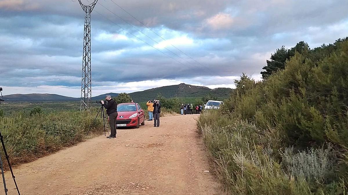 Un grupo de personas escruta el paisaje de La Culebra, ayer tarde, en busca de la imagen de ciervos o lobos. | C. S.