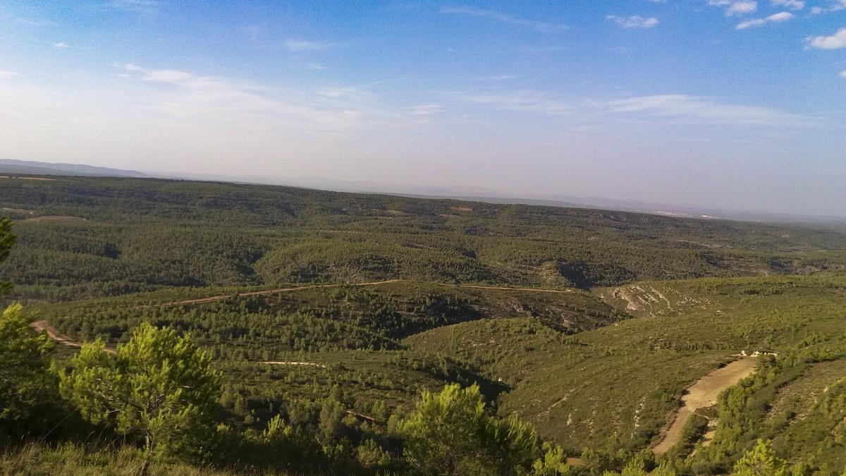Una imagen de la sierra de Enguera.