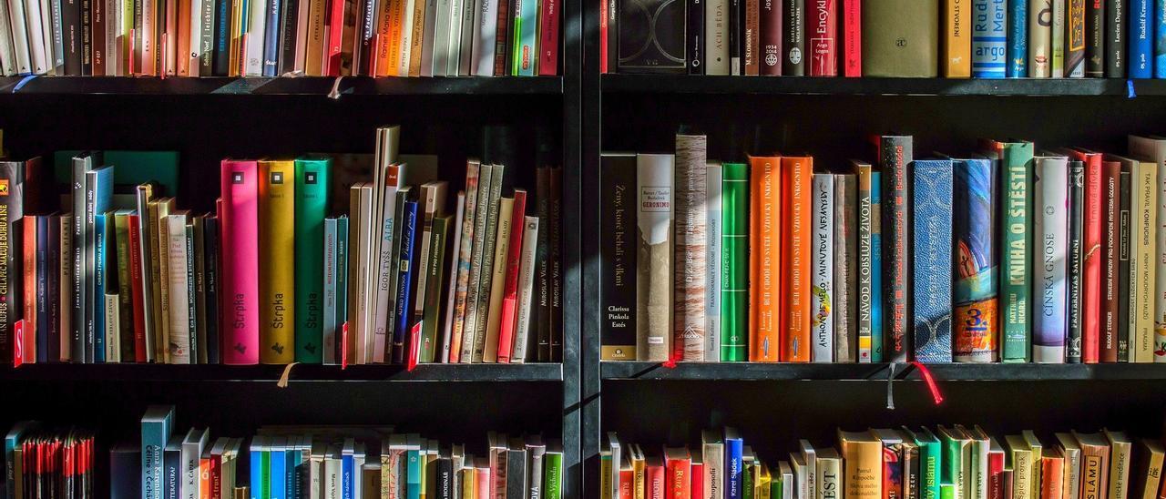 Una estantería repleta de libros