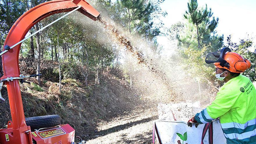 Valga tendrá una zona especial de trituración de restos vegetales