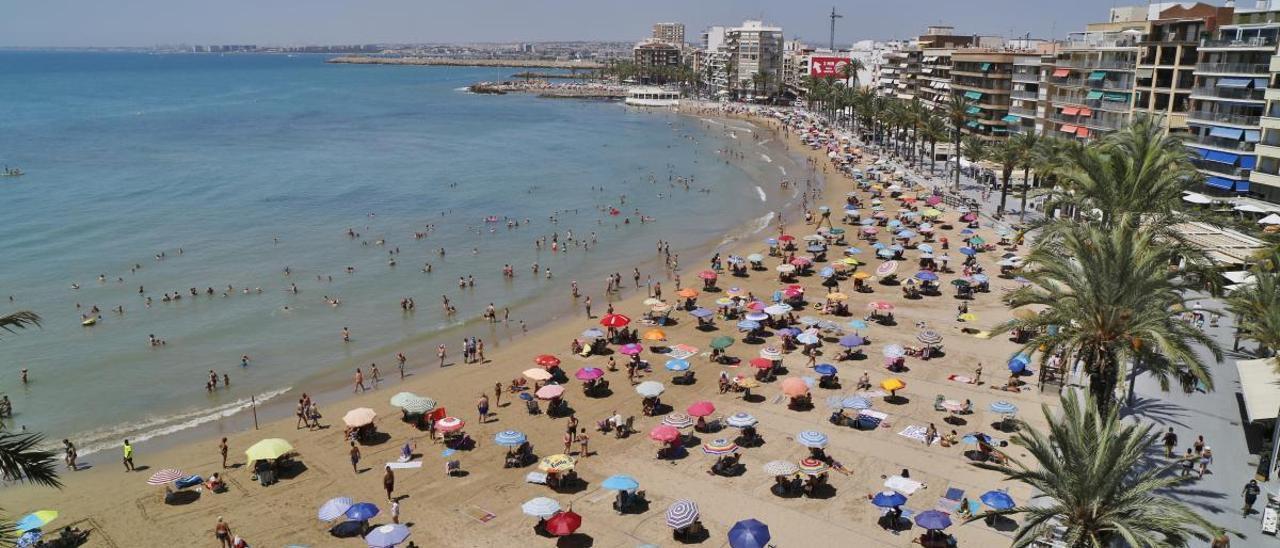 Imagen de ayer sábado de la playa del Cura de Torrevieja, que completa su aforo a diario desde hace dos semanas. FOTO JOAQUÍN CARRIÓN