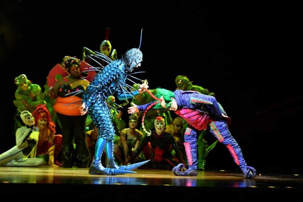 Catorce funciones en A Coruña hasta el domingo 30 de diciembre de un show de ensueño.