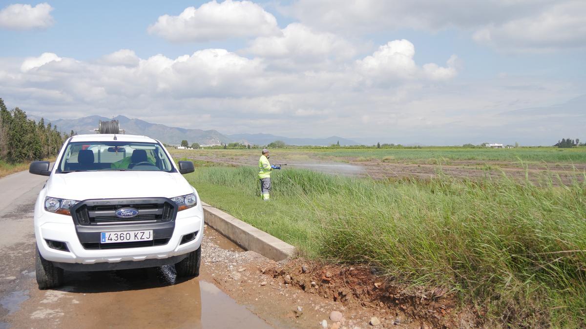 Diputación mantiene activos los equipos de tratamiento contra los mosquitos por si hace falta su intervención inmediata.