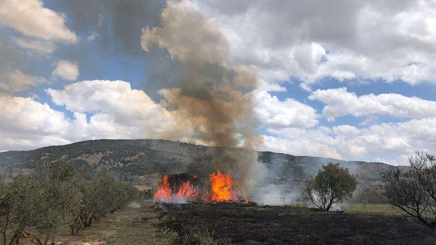 Un hombre muere en Pinoso tratando de extinguir el incendio de un cañar