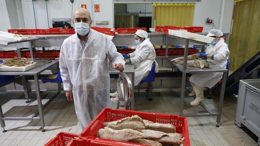 Agromar invierte un millón de euros para ampliar su fábrica en Rendiello