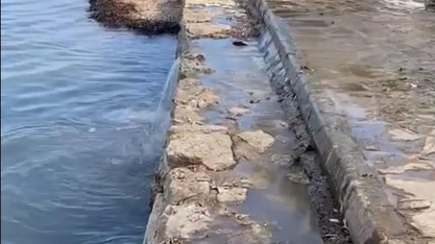 Nuevo vertido de aguas fecales en el río de Santa Eulària por un fallo eléctrico