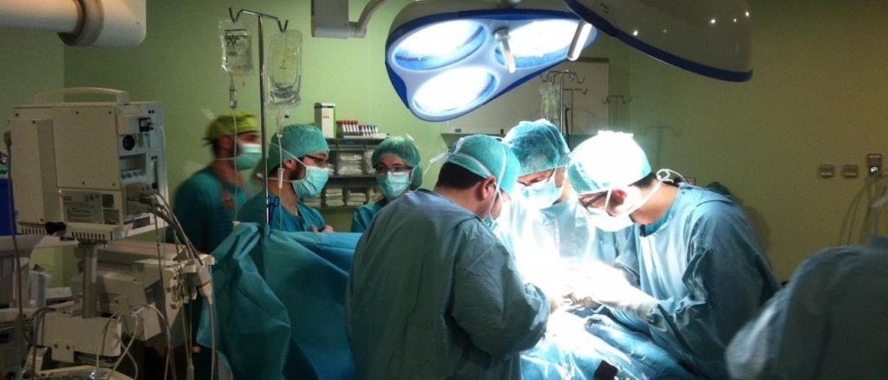 La donación de órganos se incrementa hasta un 53,8% en los dos últimos años