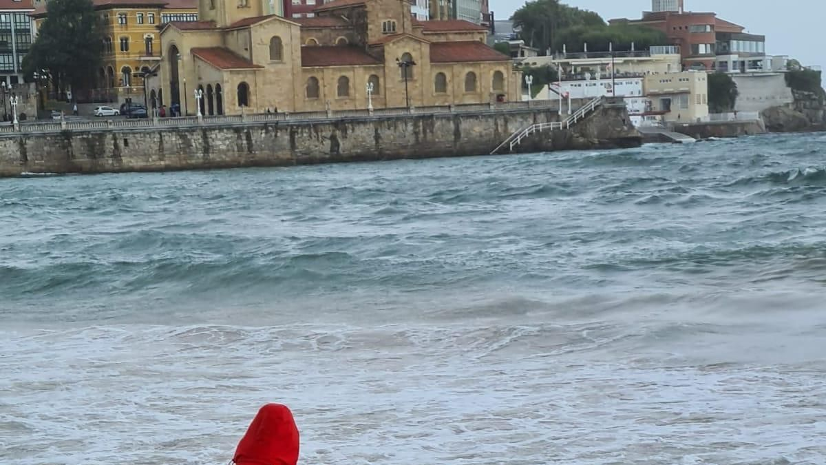 Un socorrista, junto al cadáver del delfín.