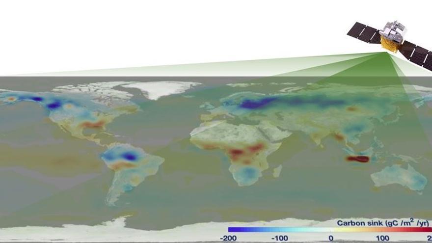 Seis gigatoneladas netas de carbono se emiten sobre la tierra cada año