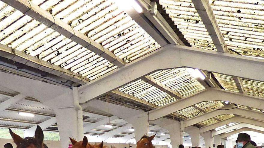 La feria de San Francisco mantiene el interés por los caballos, con buenas ventas