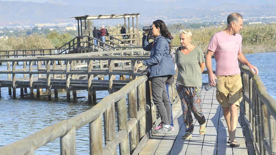 El sendero proyectado en Elche desde el Vinalopó al Hondo pone en guardia a los ecologistas