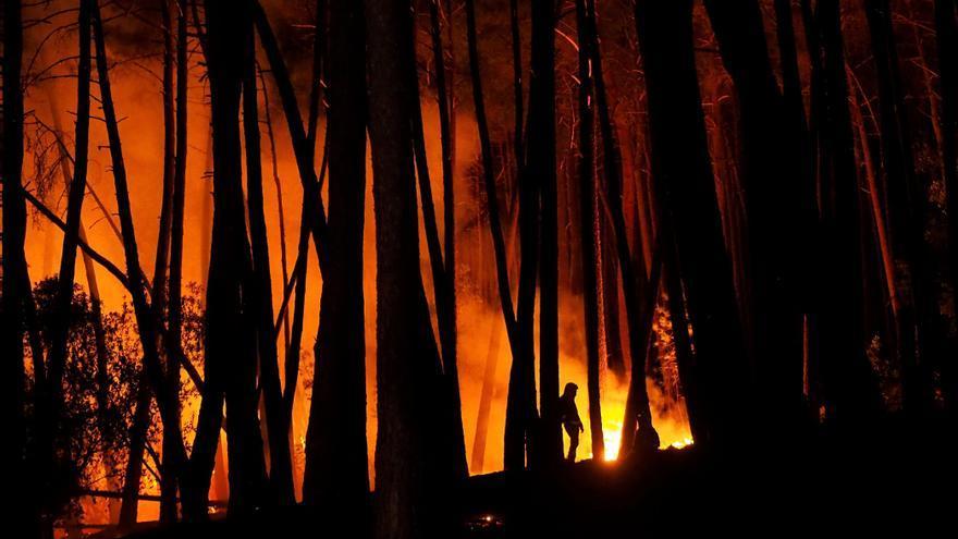 El fuego arrasa más de mil hectáreas en Ribas de Sil