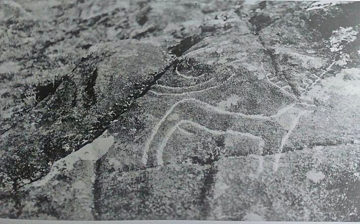 Debuxo e fotografía de Outeiro de Cogoludo (Moimenta, Campo Lameiro).