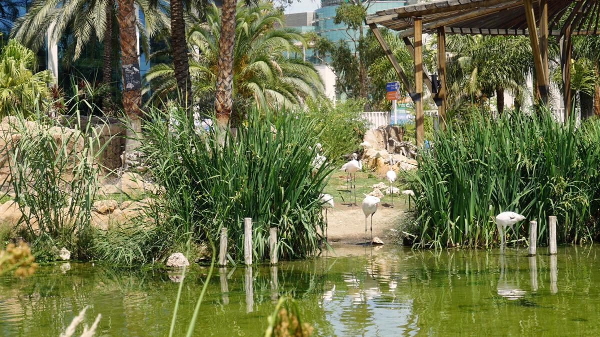 Aguas de Valencia.