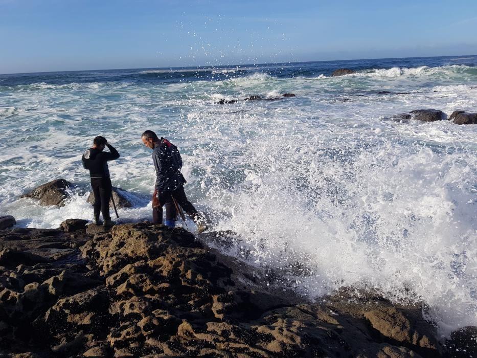 Los percebeiros, esta mañana en A Costa da Vela