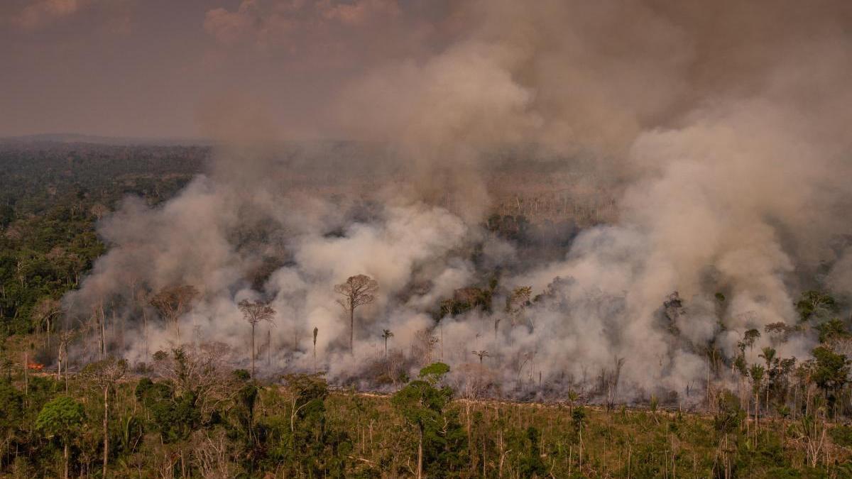 El Amazonas registra en octubre 17.326 focos de fuego.