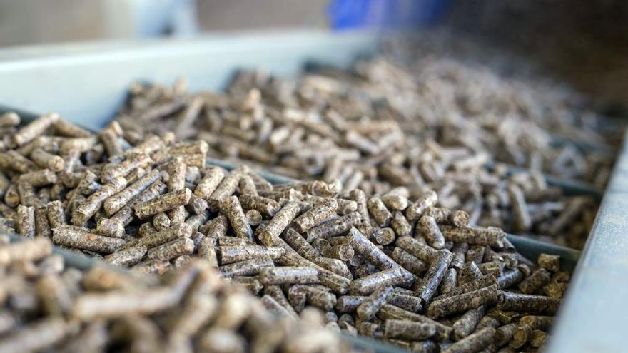 Nuevas ayudas para transformar y comercializar productos forestales