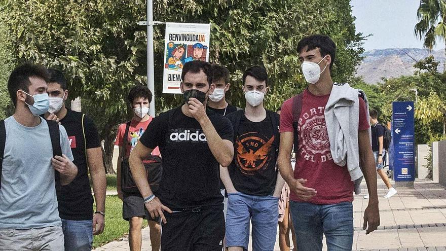Estudiantes en el campus de la Universidad de Alicante. | PILAR CORTÉS
