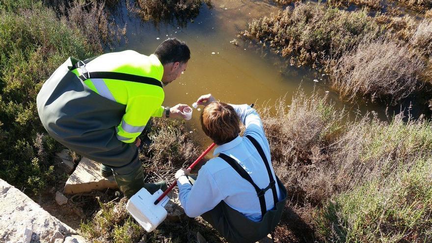 Diputación y 50 municipios fijan la hoja de ruta contra los mosquitos