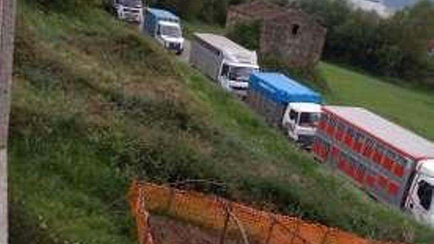 Cuiña denuncia el trasiego de ganado en Vilanova