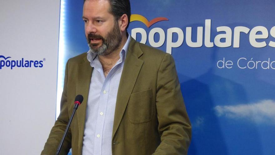 """Molina cree que el PSOE debería pedir """"disculpas"""" por haber """"paralizado Andalucía por su mala gestión"""""""