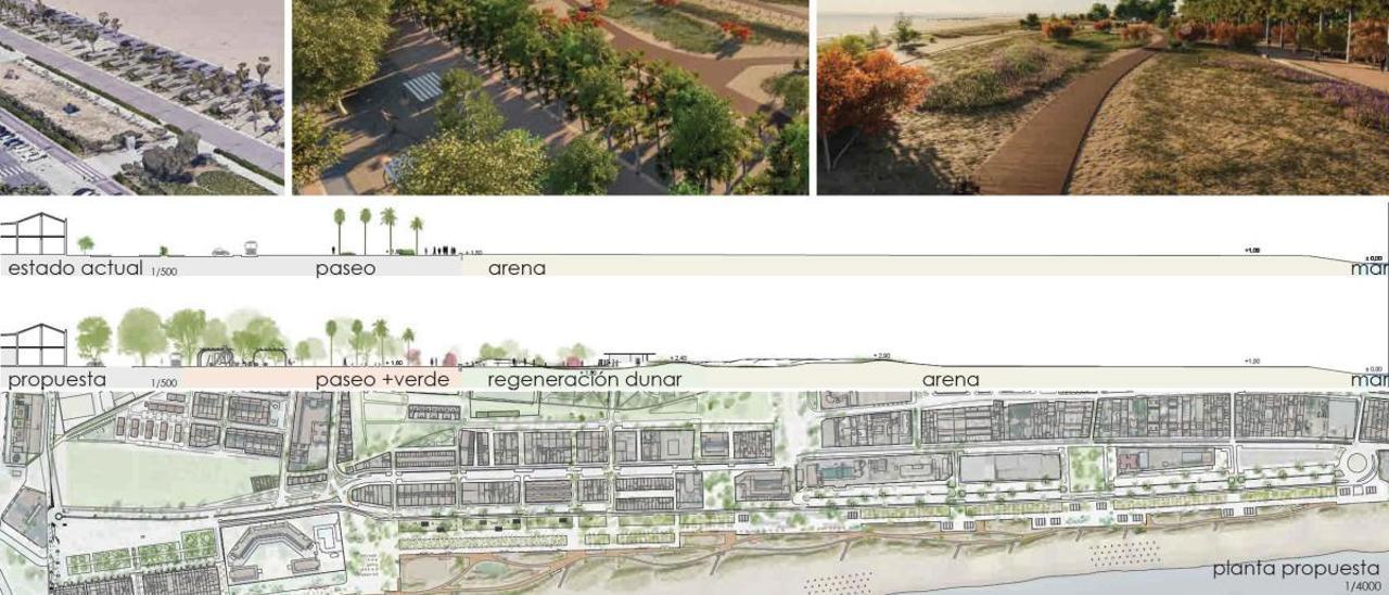 La planta propuesta por el  ayuntamiento genera  un encuentro más amable  entre la playa y el mar