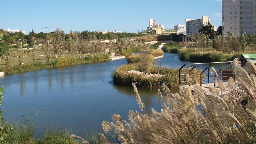 Aguas de Alicante celebra el Día Mundial del Agua 2021 con una semana de concienciación