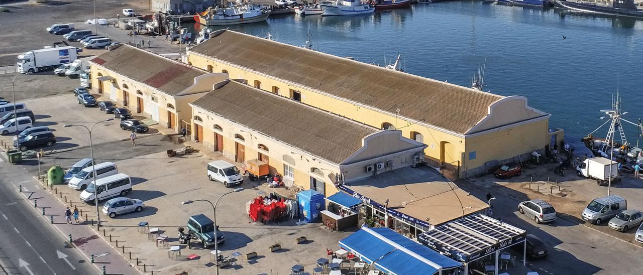Panorámica de la lonja pesaquera dentro del puerto de Torrevieja en la que está prevista la zona de ocio