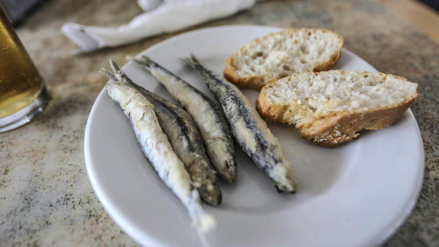 El PSPV lleva a Bruselas el proyecto pesca turismo como ejemplo de éxito