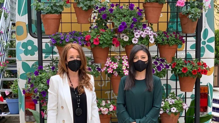 El Imgema centra su programa de actividades 'Primavera en el jardín' en el Centenario de los Patios de Córdoba