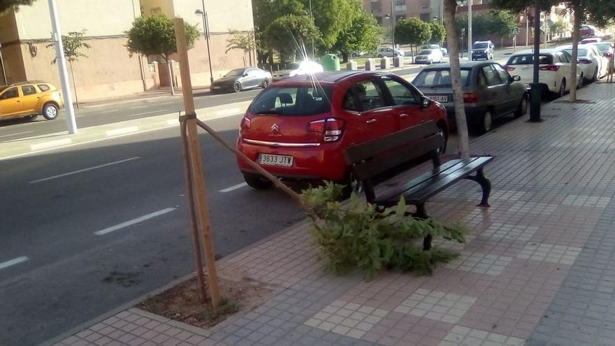 Cartagena intensifica la vigilancia ante el aumento de actos vandálicos contra jardines y mobiliario urbano