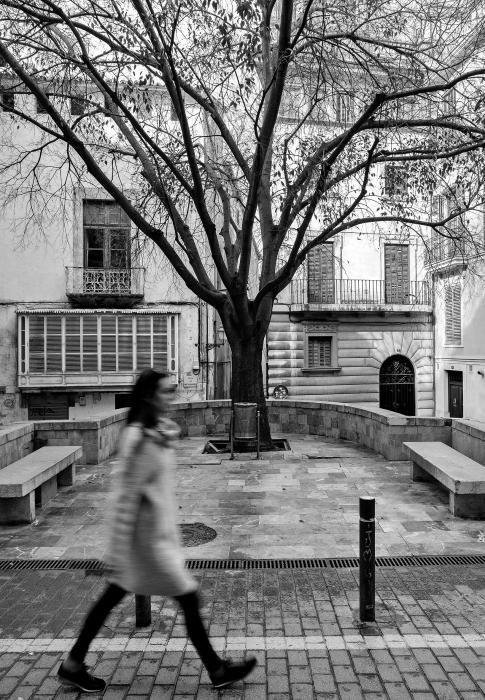 Premio Casa Vila.  Jaume Salom Coli. Tema. Paisaje urbano