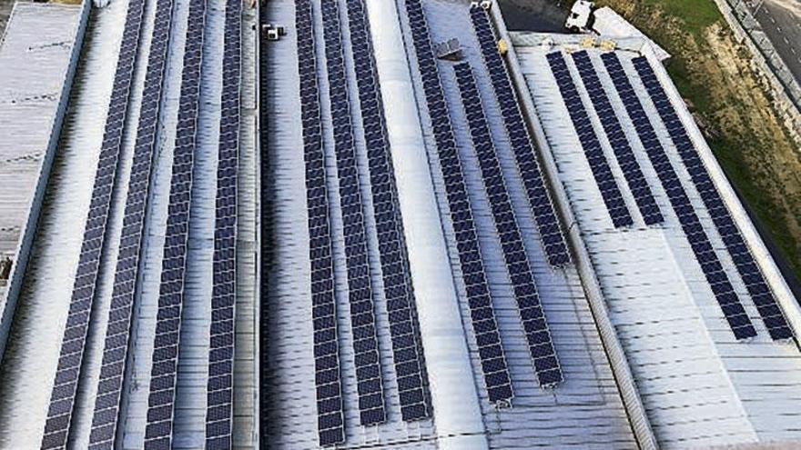 Energía Fotovoltaica para empresas más competitivas y sostenibles