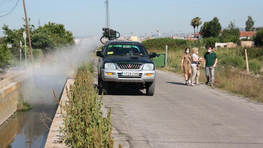 Campaña intensiva antiplagas y antimosquitos en Castelló