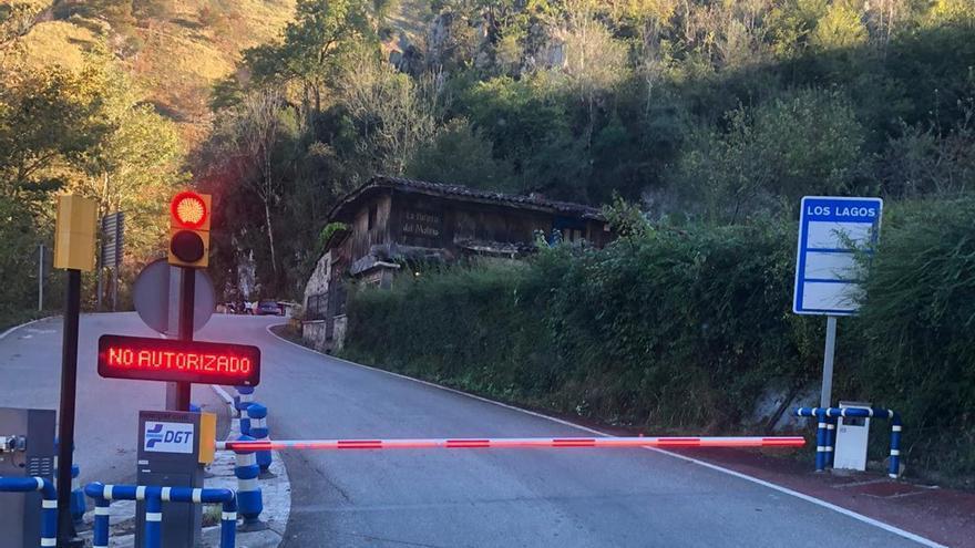Los Lagos de Covadonga lograron récord de visitas en verano con un hito: el 5 de agosto subieron en autobús más de 6.000 personas