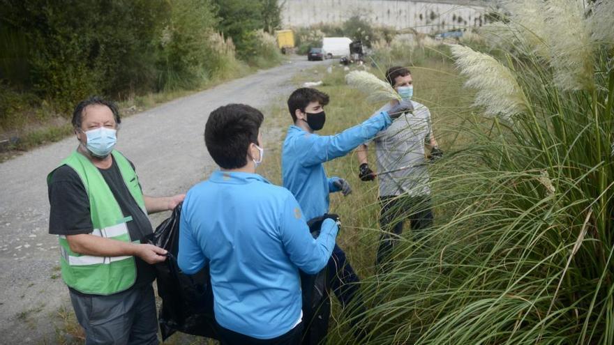Vaipolorío y los cadetes del Cisne combaten a la hierba de la pampa en Os Gafos