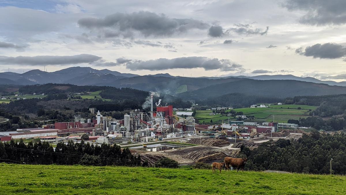 La planta de Ence Navia