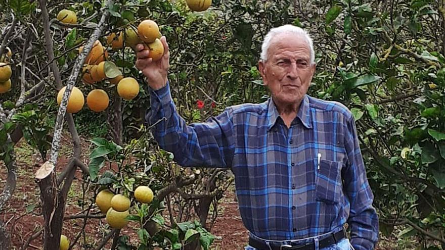 Félix Molina, un siglo de trajines
