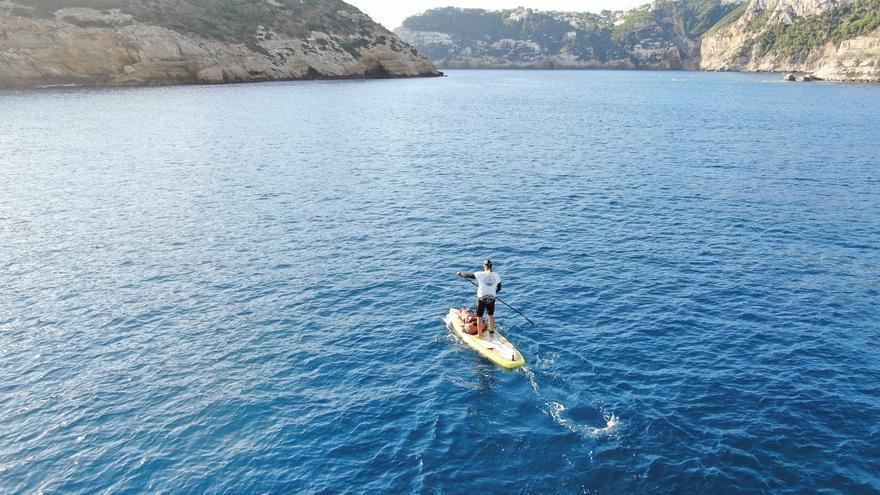 No corta el mar, sino vuela