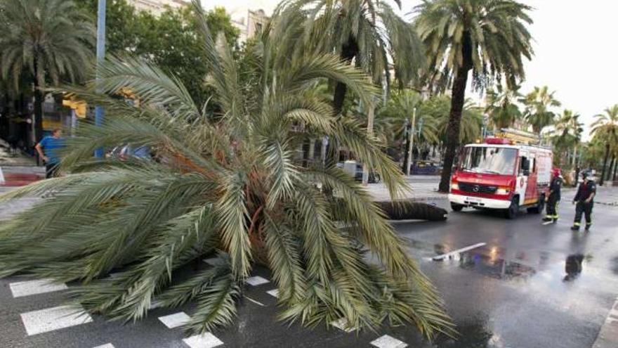 Dos muertos en Cataluña en accidentes durante una tormenta