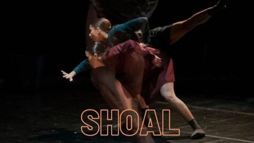 'Shoal', de Dana Raz Projects