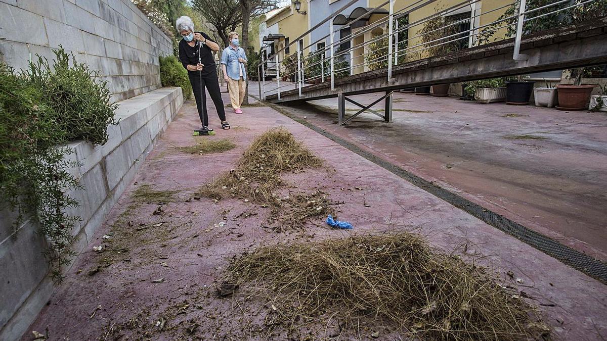 Una vecina de la calle San Pedro, en el Casco Antiguo, barre los restos de vegetación.