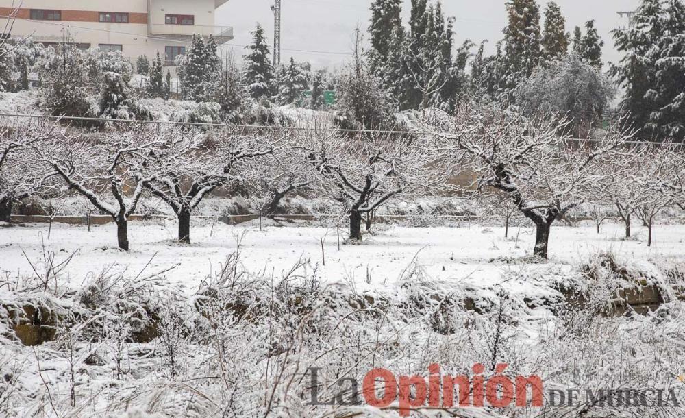 Nieve en las Fuentes del Marqués de Caravaca