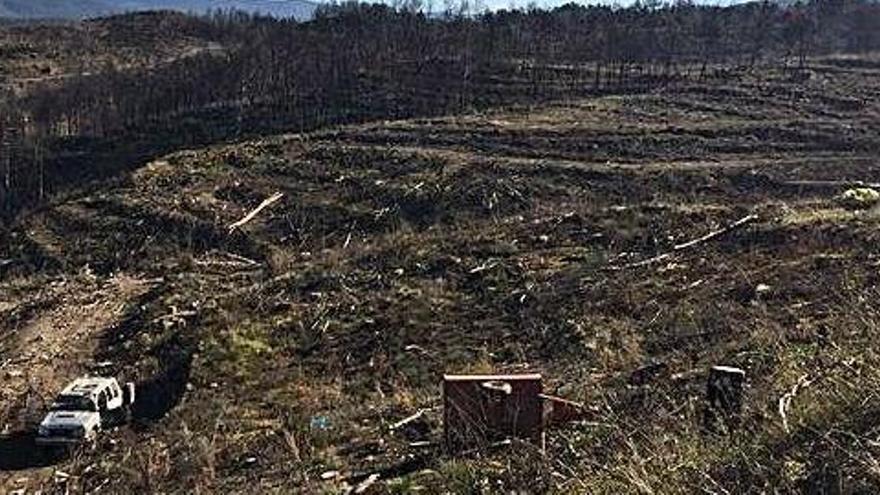 Mor el conductor que es va accidentar amb el cotxe en un camí forestal d'Artés
