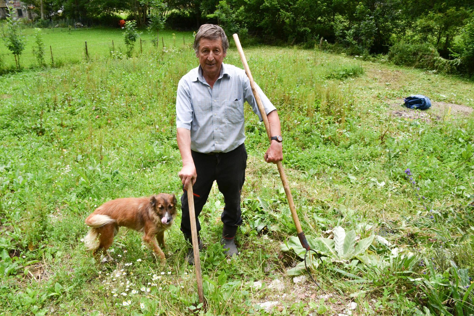 Falo Martínez, vecino de Bulnes,  con su perro en una de sus fincas en Bulnes.
