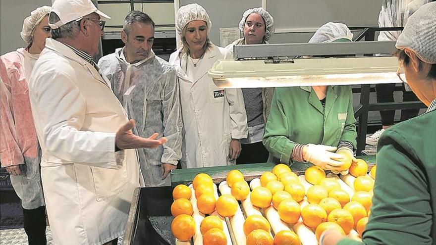 El PP afea al Gobierno central su «cobardía» con los citrícos