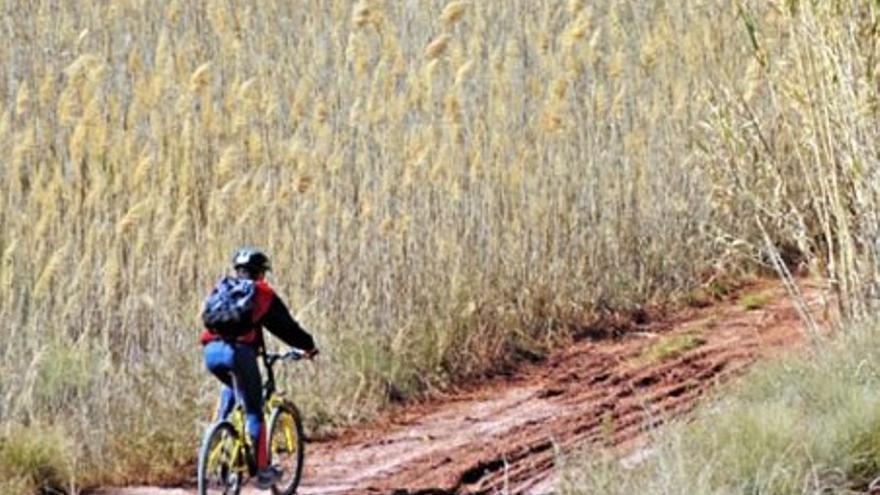 Ruta cicloturística: Petrer - Novelda