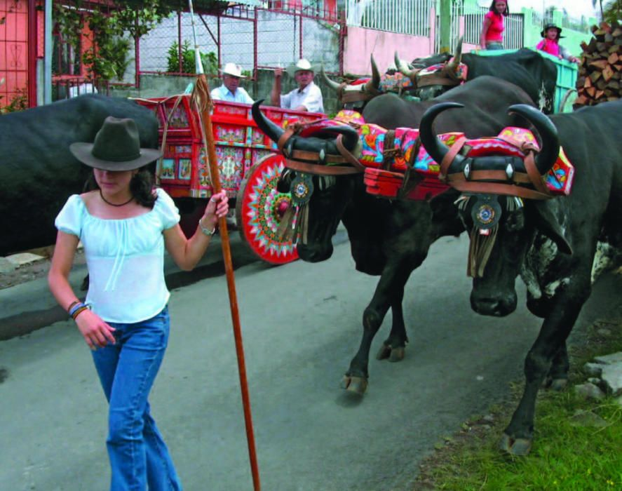 Costa Rica - La tradición del boyeo y las carretas artesanas.